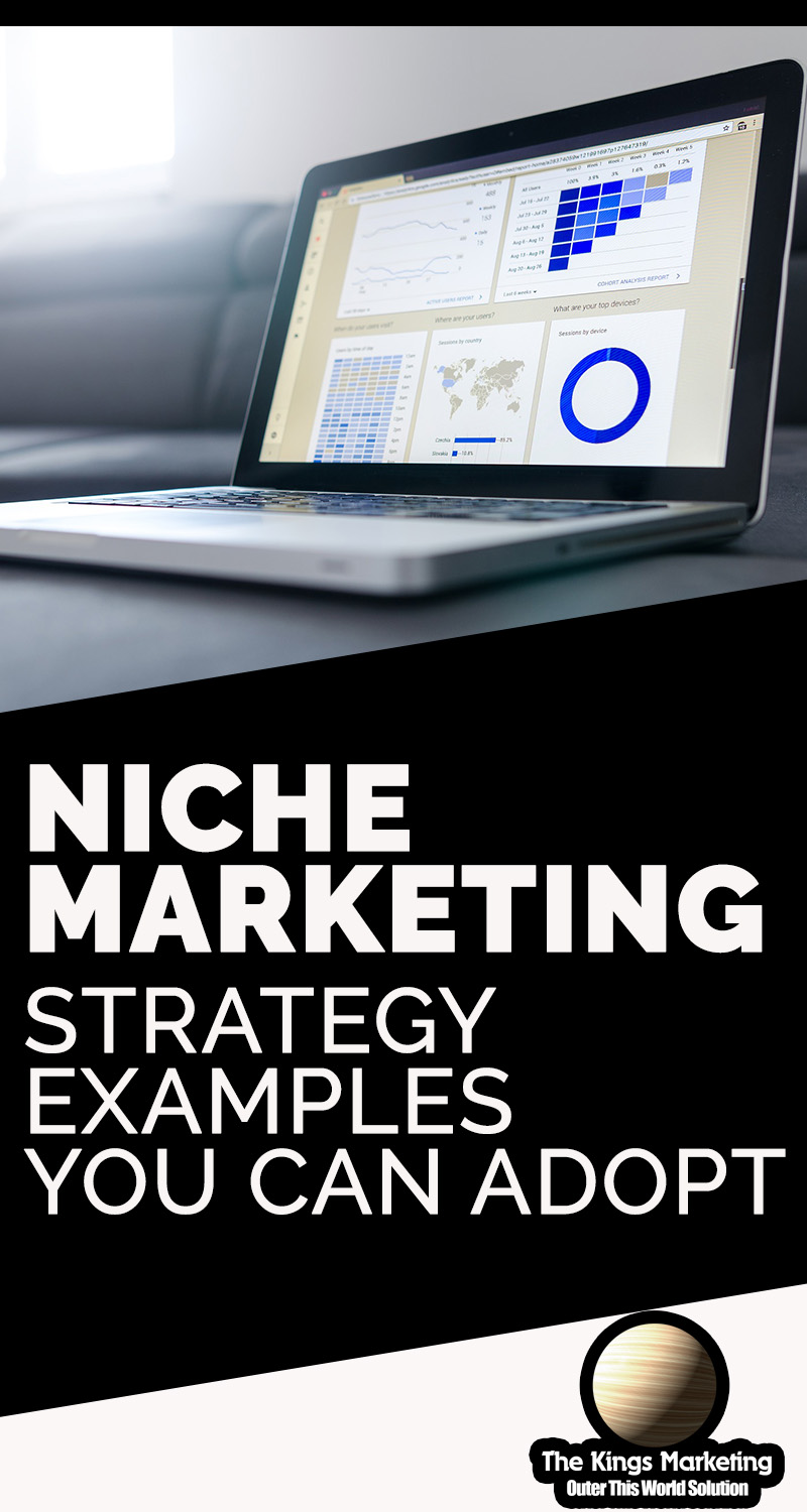 Niche Marketing Strategy Examples You Can Adopt